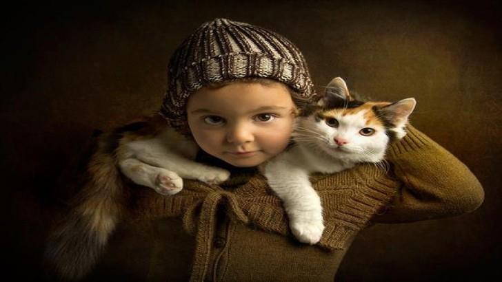 Kedi Yaşının İnsan Yaşına Göre Oranı