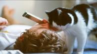 En Çekici Erkeklerin 'Kedi Besleyen Erkekler' Olduğunun 17 Kanıtı
