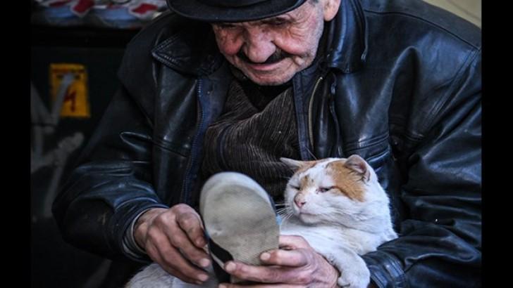 İkinci El Ayakkabı Satan Mehmet Amca ve Kedisi Osman'ın İçinizi Isıtacak Hikayesi