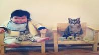 Kedi Toco ve İnsan Arkadaşının 17 Sevimli Fotoğrafı