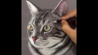 Muhteşem Kedi Çizimi