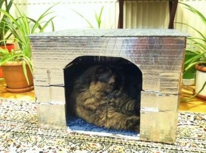 Kedi Evi Yapımı 7