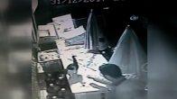 Ümraniye'de Kediyi Boğarak Öldüren Cani Yakalandı
